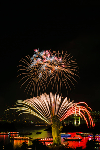 お台場レインボー花火と自由の女神と屋形船夜景の写真素材 [FYI03841276]