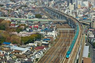 桜咲く東京を走る東北新幹線はやぶさの写真素材 [FYI03841310]
