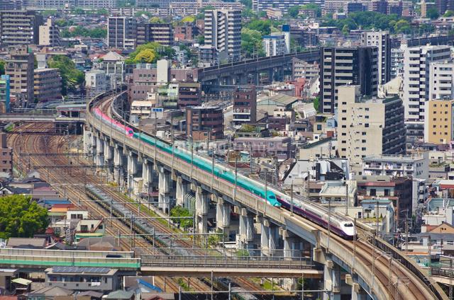 東京を走る東北新幹線はやぶさと秋田新幹線スーパーこまちの写真素材 [FYI03841472]