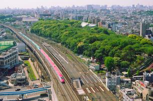 新緑の東京を走る東北新幹線はやぶさと秋田新幹線スーパーこまちの写真素材 [FYI03841484]