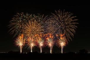 こうのす花火大会の音と光のコラボレーションの写真素材 [FYI03841581]