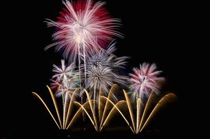 いせはら芸術花火大会のグランドフィナーレメロディ花火の写真素材 [FYI03841632]