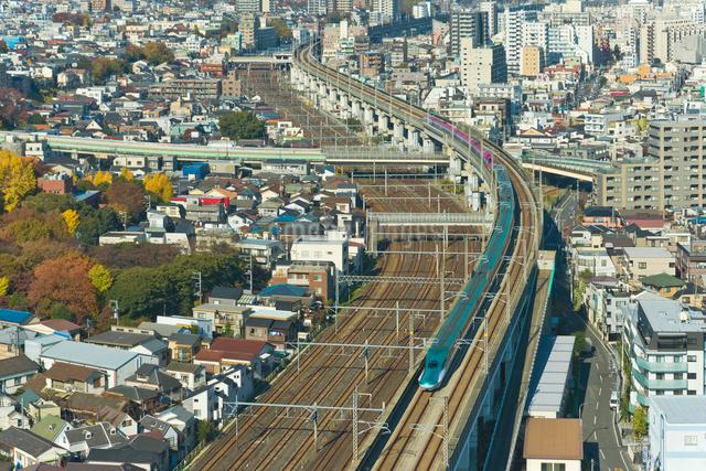 東京を走る東北新幹線はやぶさE5系と秋田新幹線こまちE6系の写真素材 [FYI03841645]