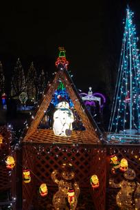 足立区元渕江公園の光の祭典クリスマスツリーイルミネーションの写真素材 [FYI03841653]