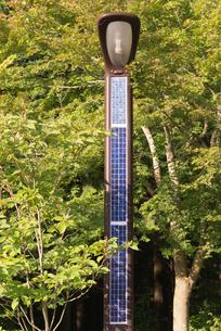 自然エネルギー太陽光パネルの電灯の写真素材 [FYI03841696]