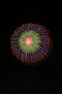 長岡まつり大花火大会の匠の花火で昇曲導付八重芯変化菊の写真素材 [FYI03841720]