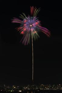 夜景と長岡まつり大花火大会の匠の花火で昇曲導芯入八方咲小割浮模様の写真素材 [FYI03841727]