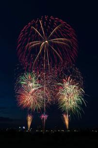 とりで利根川大花火のオープニングの写真素材 [FYI03841748]