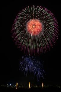 とりで利根川大花火の募金花火『星のキラメキ』の写真素材 [FYI03841749]
