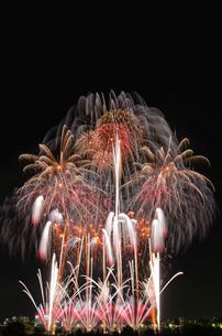 とりで利根川大花火のエンディング音楽花火の写真素材 [FYI03841752]