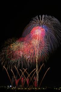 とりで利根川大花火の花火浪漫の写真素材 [FYI03841753]