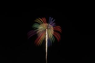 常総きぬ川花火大会の昇曲付万華鏡の写真素材 [FYI03841761]