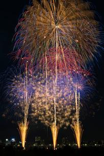 とりで利根川大花火の夜空deアミーゴの写真素材 [FYI03841781]