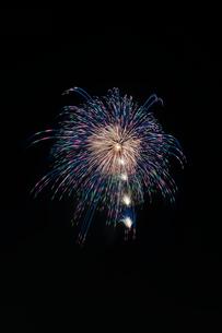 常総きぬ川花火大会の花火ミュージアムで昇小花付きらめきの花の写真素材 [FYI03841794]