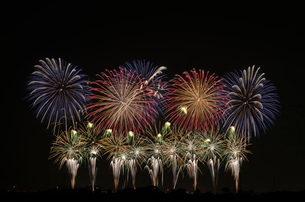 こうのす花火大会の音と光の合同スターマイン②「艶やか」の写真素材 [FYI03841832]