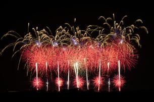 こうのす花火大会の音と光のコラボレーションの写真素材 [FYI03841836]
