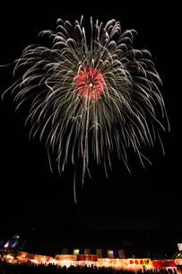 長野えびす講煙火大会のコンテストで昇り曲導付三重芯銀彩の華の写真素材 [FYI03841861]