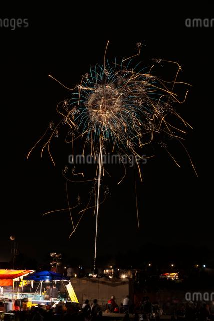 土浦全国花火競技大会創造花火で蜘蛛の巣にかかったスズメバチの写真素材 [FYI03841897]