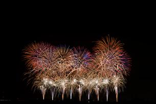 こうのす花火大会の音と光の合同スターマイン②「艶やか」の写真素材 [FYI03841902]