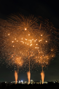 とりで利根川大花火 百花繚乱 ジャポニズム 和火音楽の写真素材 [FYI03842059]
