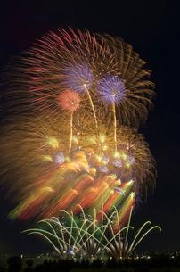 とりで利根川大花火 百花繚乱 Wonderful Worldの写真素材 [FYI03842060]