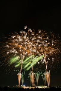 とりで利根川大花火 百花繚乱 ナイアガラの滝とエンディング音楽花火の写真素材 [FYI03842065]
