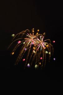 常総きぬ川花火大会 彩色しだれ丁子花小割浮模様の写真素材 [FYI03842100]