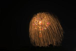古河花火大会 三尺玉 昇曲導大輪錦冠彩色小割浮模様の写真素材 [FYI03842111]