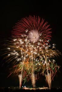 とりで利根川大花火 恋する夏休みとナイアガラの滝とエンディング音楽花火の写真素材 [FYI03842130]