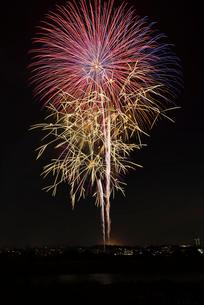 世田谷区たまがわ花火大会 真珠の丘の写真素材 [FYI03842152]