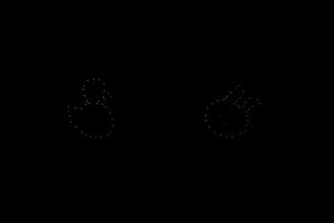 常総きぬ川花火大会 イメージ花火 夜空のアラカルト アヒル・うさぎの写真素材 [FYI03842156]