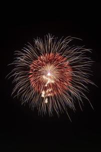 土浦全国花火競技大会で昇曲導付三重芯菊先変化の写真素材 [FYI03842212]