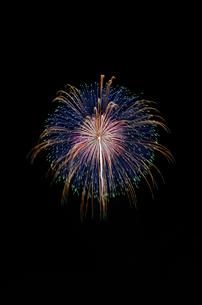いばらきまつり花火で10号玉の錦八方青緑の写真素材 [FYI03842240]