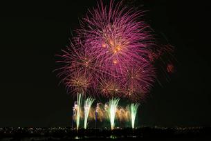 葛飾納涼花火大会の写真素材 [FYI03842272]