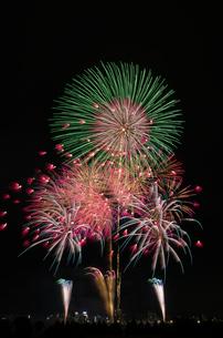 とりで利根川大花火の花の舞、蝶の舞の写真素材 [FYI03842295]
