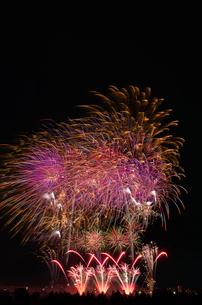 とりで利根川大花火のエンディング音楽花火の写真素材 [FYI03842296]