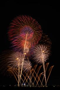 とりで利根川大花火の利根川花百景の写真素材 [FYI03842337]