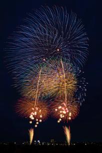 とりで利根川大花火のオープニングの写真素材 [FYI03842338]