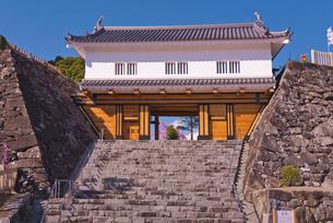 舞鶴城公園の鉄門と桜の写真素材 [FYI03842448]