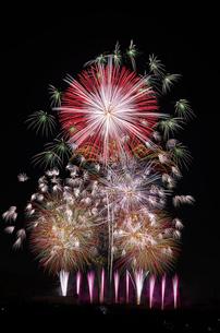 いせはら芸術花火大会 グランドフィナーレ メロディー花火の写真素材 [FYI03842485]