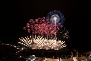 常総きぬ川花火大会音楽と花火のコラボレーション「マエストロ」の写真素材 [FYI03842501]
