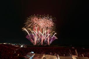 常総きぬ川花火大会 音楽と花火のコラボ「NOW!」の写真素材 [FYI03842532]