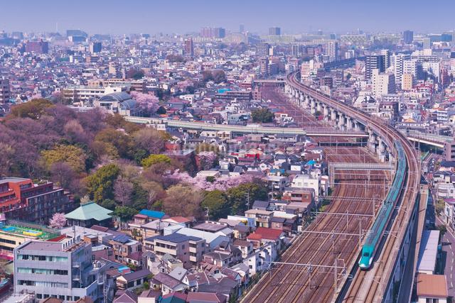 東京を走る東北新幹線E5系はやぶさの写真素材 [FYI03842566]