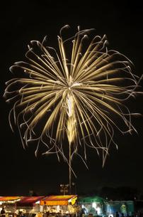土浦全国花火競技大会 昇り曲導付輝き芯椰子菊先変化の写真素材 [FYI03842659]