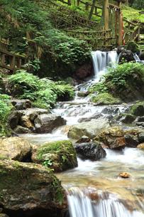瓜割りの滝の写真素材 [FYI03842799]
