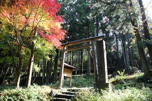 石見銀山 佐毘売山神社(さひめやま)の写真素材 [FYI03842812]