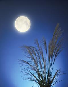 月とススキの写真素材 [FYI03843199]