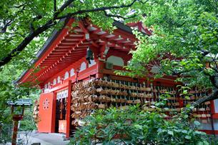 荏柄天神社の合格祈願絵馬の写真素材 [FYI03843665]