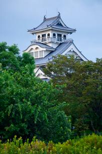 長浜城歴史博物館になっている長浜城の写真素材 [FYI03843743]
