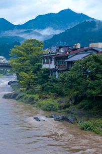 雨上がりの郡上八幡吉田川の写真素材 [FYI03843766]